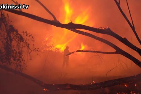 ArgolidaPortal.gr ΑΡΓΟΣ-Πυρκαγιά ξέπασε στο βάλτο στη περιοχή της Αγίας Άννας