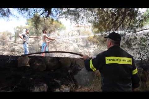 ArgolidaPortal.gr ΝΑΥΠΛΙΟ--Πυρκαγιά στα Δενδρά  Αργολίδας