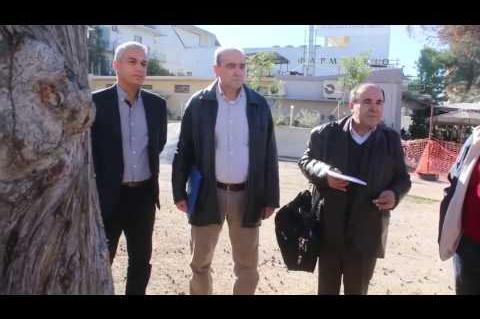 ArgolidaPortal.gr Ζάγκας για το κυπαρίσσι στο Άργος:Κανένα δέντρο δεν είναι ασφαλές
